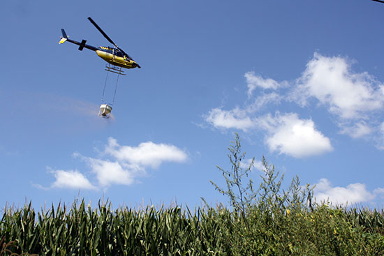 USDA aerial seeding cover crops