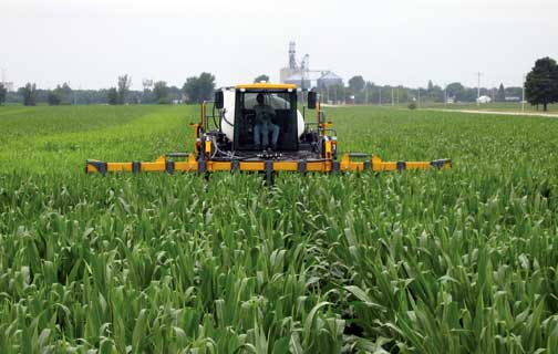 Sidedressing Maize with Nitrogen using a high-clearance sprayer.