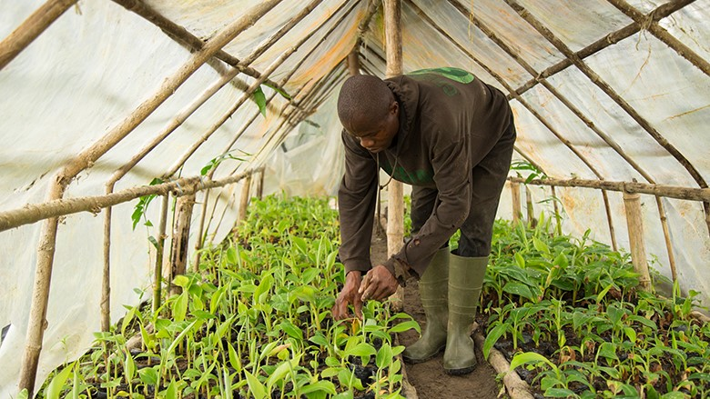 WAAPP sustainable farming west africa