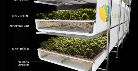 indoor agriculture - aeroponics illustration