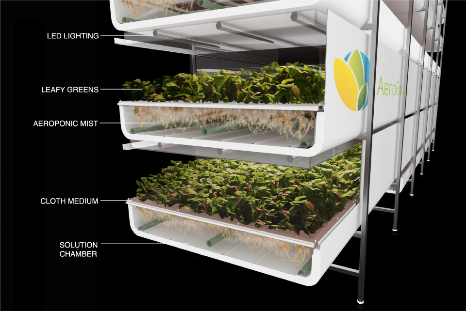 indoor agriculture - aeroponics illustration