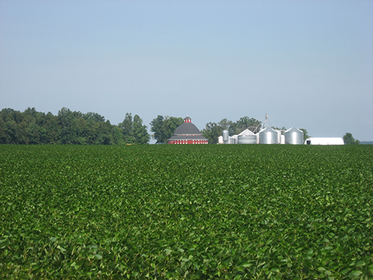soybean climate smart