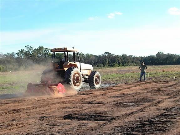 Incorporating Biochar before planting