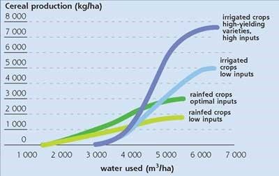 Irrigated and Rainfed Agriculture Yields