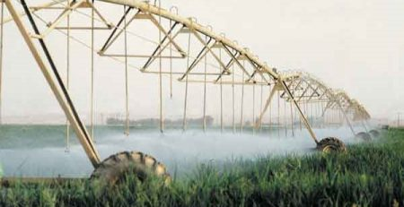 Overhead Center Pivot Irrigation in Israel