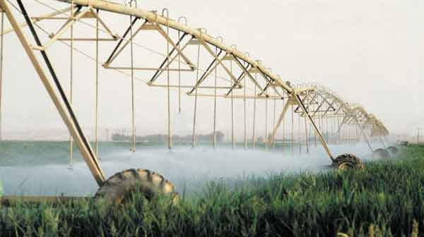 Overhead Center Pivot Irrigation in Israel