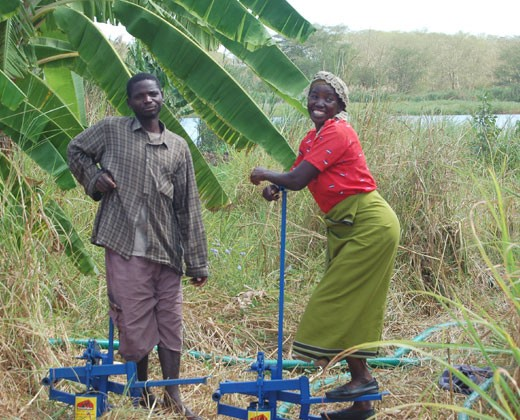 Treadle pumps allow the people of Southern Malawi to use their own foot power to pull water from the Shire River to irrigate their crops