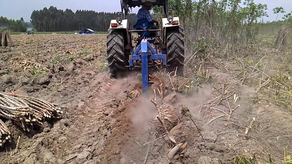 Mechanization of Cassava Production