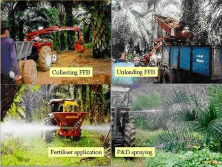 African Palm Oil Spraying