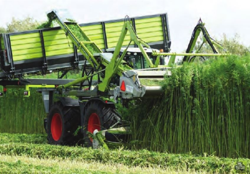Claas Xerion with hemp stripper