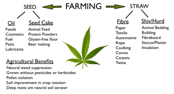 industrial hemp benefits