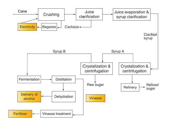 Chart of activities in a typical Sugar Cane plant