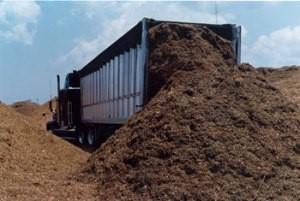 Sugarcane bagasse being delivered off a truck