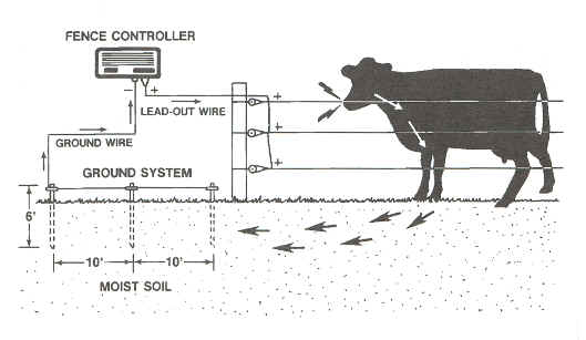 electric fence system